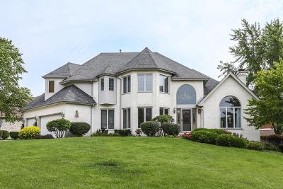 Palos Heights, Palos Hills Single Family Home For Sale: 425 Shadow Creek Drive