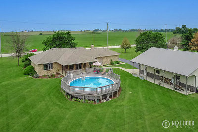 Plainfield Single Family Home For Sale: 17245 County Line Road