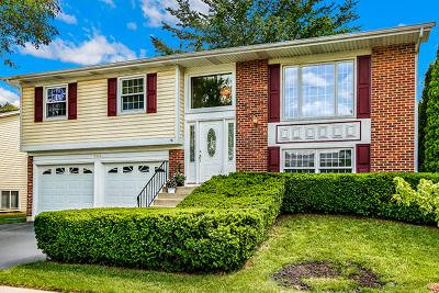 Hoffman Estates Single Family Home New: 4646 Brigantine Lane