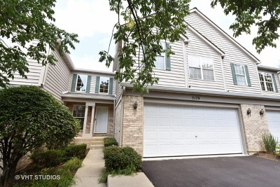 Woodridge Condo/Townhouse New: 3179 Foxridge Court #3179