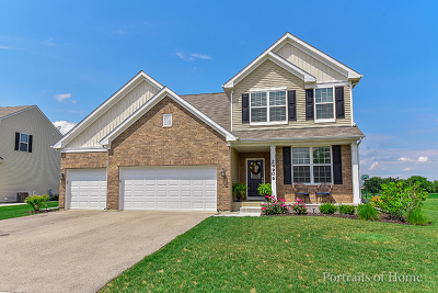 Plainfield Single Family Home For Sale: 24906 Thornberry Drive