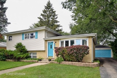 Roselle Single Family Home Contingent: 430 South Park Street