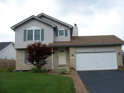 Plainfield Single Family Home For Sale: 1407 Quail Drive