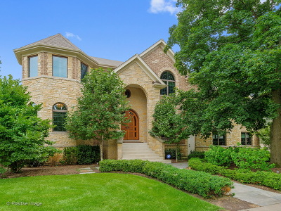 Wheaton  Single Family Home For Sale: 228 East Franklin Street