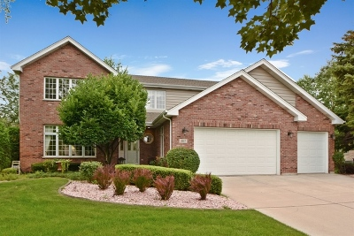 Orland Park Single Family Home For Sale: 8117 Katy Lane