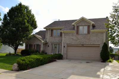 Bolingbrook Single Family Home For Sale: 796 Springbrook Lane