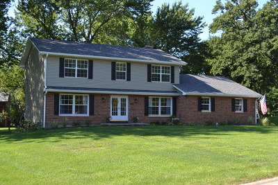 Batavia Single Family Home Contingent: 343 Meadowrue Lane