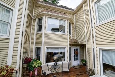 Oak Park Condo/Townhouse For Sale: 413 Wisconsin Avenue #D