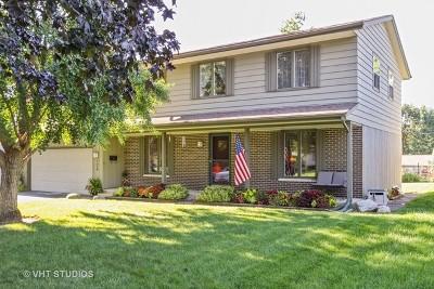 Hansons Single Family Home For Sale: 124 Lloyd Street