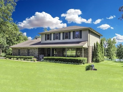 McHenry Single Family Home For Sale: 28223 West Ridge Road