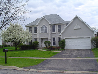 Batavia Single Family Home For Sale: 133 North Dixon Drive