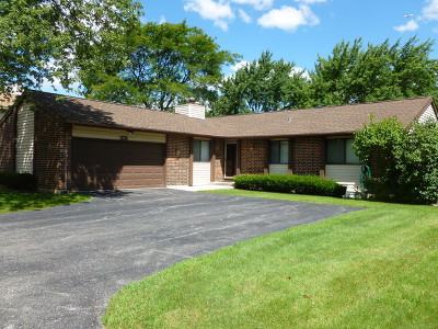 Roselle Single Family Home For Sale: 206 Plum Grove Road