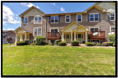 Burr Ridge Condo/Townhouse For Sale: 11s515 Rachael Court