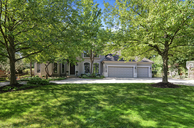 Hinsdale Single Family Home For Sale: 414 Glendale Avenue