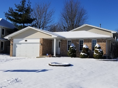 Bolingbrook Single Family Home For Sale: 1755 Maroon Bells Lane