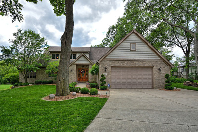 Downers Grove Single Family Home For Sale: 5512 Fairview Avenue
