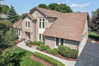 Homer Glen Single Family Home For Sale: 16833 Deer Path Drive