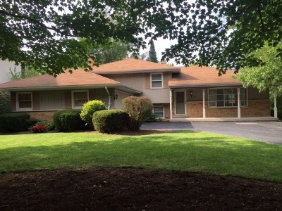 Clarendon Hills Single Family Home For Sale: 432 Naperville Road