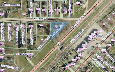 Braidwood Residential Lots & Land For Sale: 177 East Eureka Street