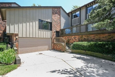 Willowbrook Condo/Townhouse Contingent: 25 Lake Shore Drive