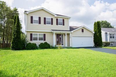 Island Lake Single Family Home For Sale: 4623 Southhampton Drive