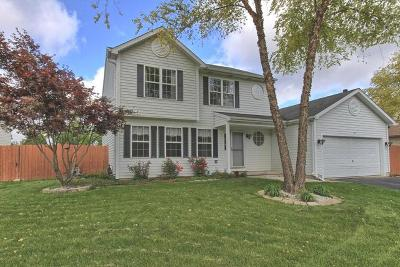 Fox Lake Single Family Home For Sale: 22 Point Place