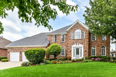 Orland Park Single Family Home For Sale: 16936 Yearling Crossing Drive