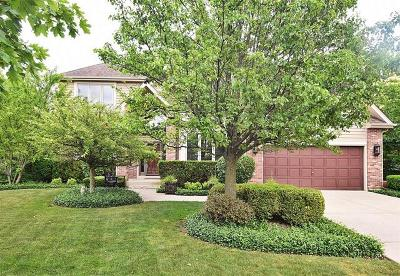 Geneva Single Family Home For Sale: 726 Fox Run Drive