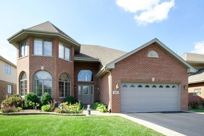 Addison Single Family Home For Sale: 1881 West Armitage Avenue