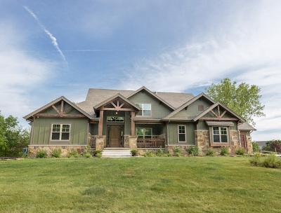 Plainfield Single Family Home For Sale: 26313 Cameron ( Lot 64) Court