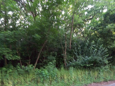 Barrington Hills Residential Lots & Land For Sale: 11 Autumn Trail