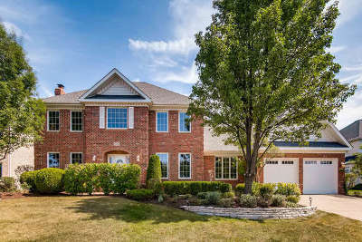 Orland Park Single Family Home Contingent: 13821 Mayflower Lane