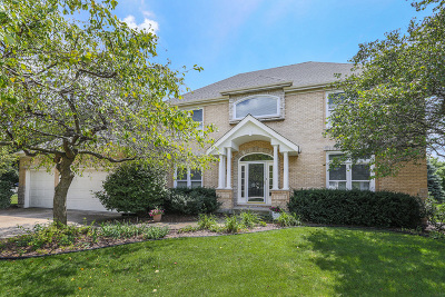 Naperville Single Family Home For Sale: 1431 Frenchmans Bend Drive