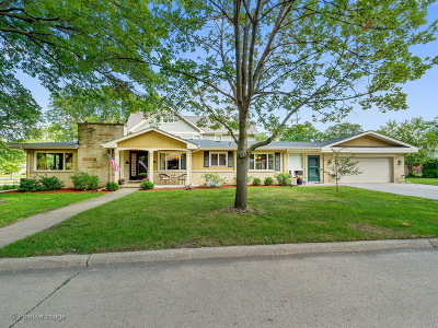 Western Springs Single Family Home For Sale: 5345 Grand Avenue