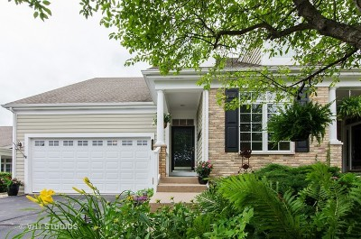 Crystal Lake Condo/Townhouse For Sale: 4233 Weatherstone Road