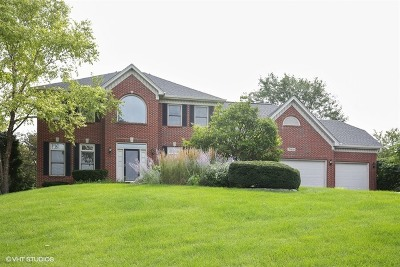 St. Charles Single Family Home For Sale: 3n833 Arbor Creek Road