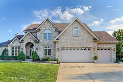 Plainfield Single Family Home Contingent: 26519 Silverleaf Drive