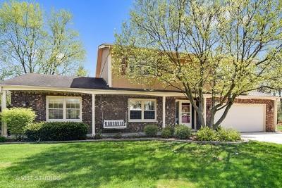 Glen Ellyn Single Family Home For Sale: 893 Marston Court