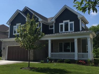 Glen Ellyn Single Family Home For Sale: 355 St Charles Road