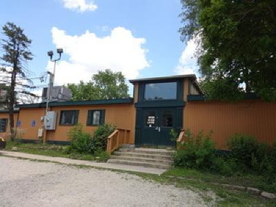 Homer Glen, Lockport Commercial For Sale: 14929 Archer Avenue