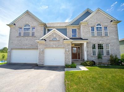 Lockport Single Family Home For Sale: 17725 West Quail Ridge Drive