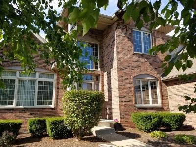 Plainfield Single Family Home For Sale: 12713 Barrow Lane