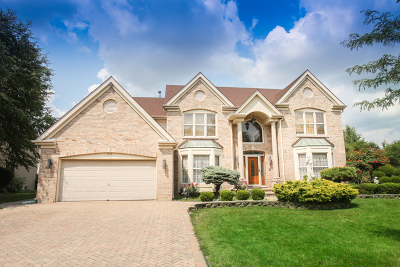 Schaumburg Single Family Home Contingent: 1310 Lorraine Place