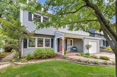 Glen Ellyn Single Family Home For Sale: 153 North Park Boulevard