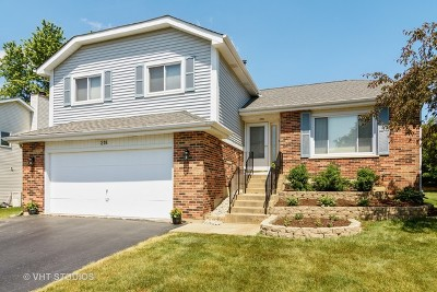 Lake Zurich Single Family Home For Sale: 218 Washo Drive