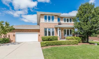 New Lenox Single Family Home For Sale: 501 Deerfield Lane