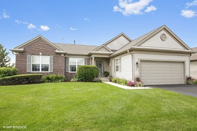 Huntley Single Family Home Contingent: 12353 Foxtail Lane