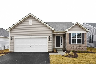 Huntley Single Family Home For Sale: 11913 Hollister Court