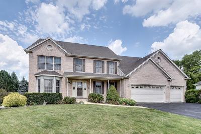 Batavia Single Family Home For Sale: 415 Grove Court