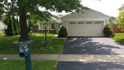 Roselle Single Family Home For Sale: 685 Berwick Place
